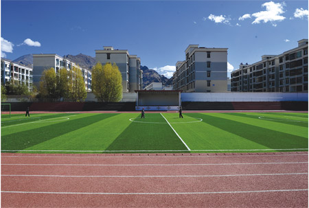Sport Artificial Grass